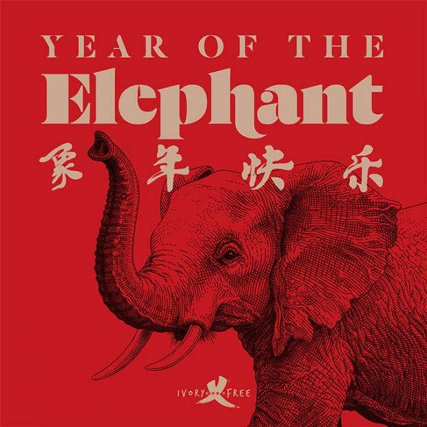 Year of the Elephant.jpg