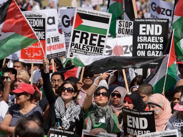 pg-12-palestine-supporters-getty.jpg