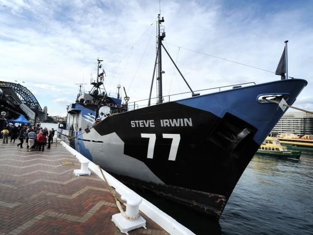 Sea-Shepherd-Getty.jpg