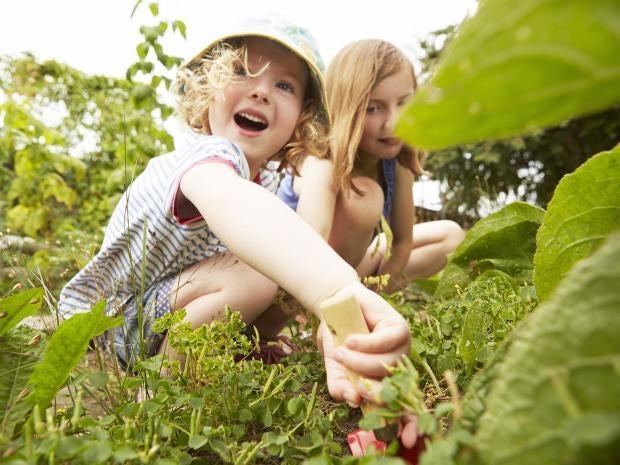 web-children-gardening-rf-gettyc.jpg