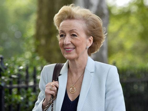 May Faces Leadsom in Battle to Follow Cameron as British PM