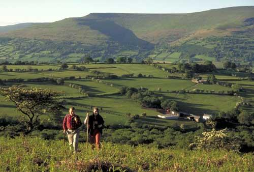 Take a gourmet walk in the Brecons, stopping off at food producers to sample local fare