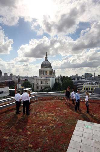Up on the roof: the Eversheds building in the City of London