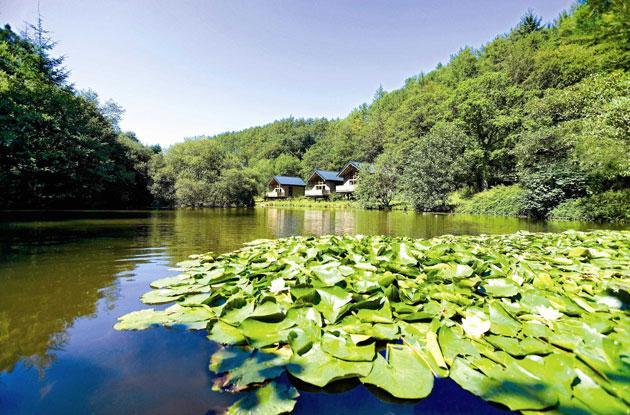 Green heaven: cabins at Deerpark