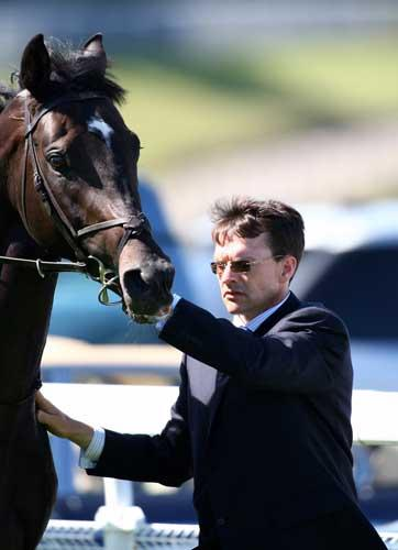 O'Brien, with 18 Group One prizes already in the bag this year, will have multiple representation at Haydock and Leopardstown