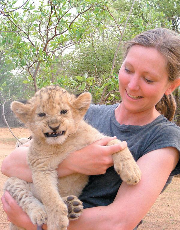 Baby gap: African Conservation Experience offers a taste of life on a game reserve for those seeking a shorter adventure
