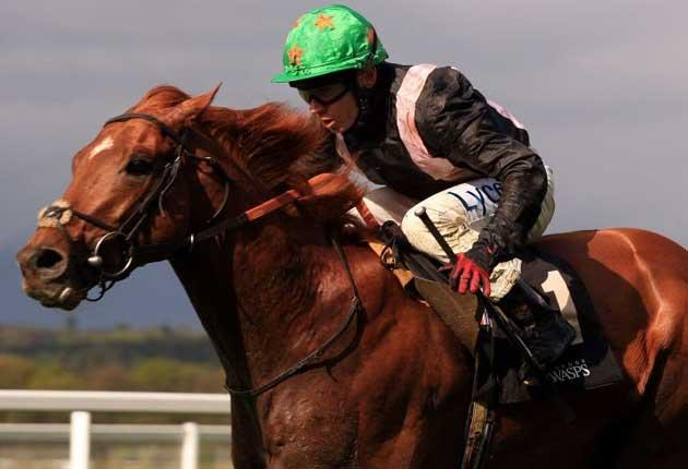 Sir Gerry has an opportunity of adding to his fine record at Ascot in today's Bengough Stakes