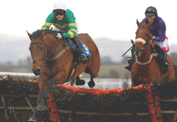 Forty Five and Jenny Carr (left) on their way to victory in the lady riders' handicap hurdle at Ludlow yesterday