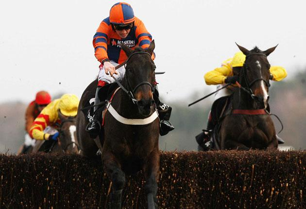 Niche Market, saddled by Bob Buckler, clears the final fence when winning at 33-1 at Ascot last month