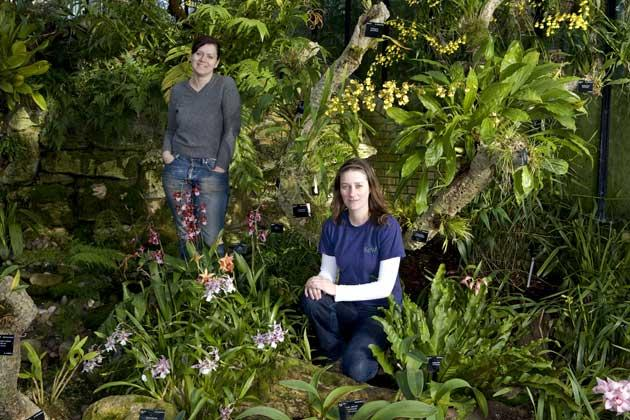 Hot tropic: Kew's orchid queen Lara Jewitt (right) lets Emma in on the secrets of its display