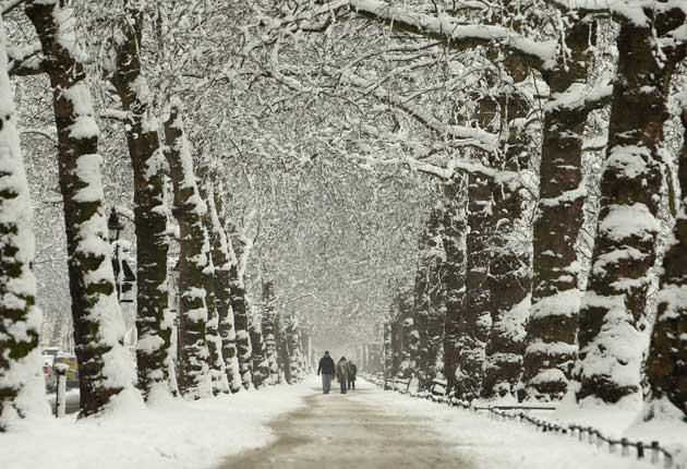 A snow-shrouded avenue in St James's Park, central London, on Monday morning