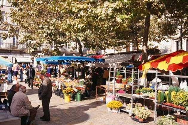 In the stalls: Carcassonne's vibrant market showcases regional delicacies