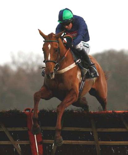 Punchestowns has a fine chance of overcoming Kasbah Bliss in today's World Hurdle