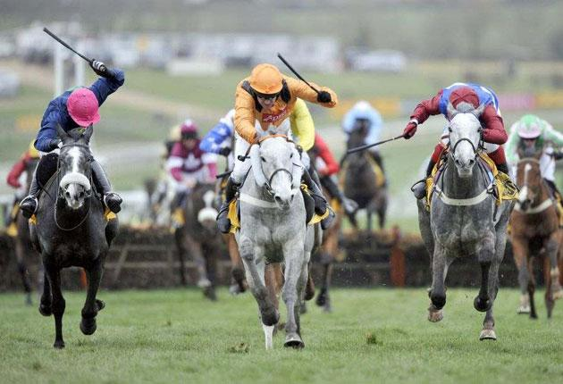 Zaynar (centre) lands the Triumph Hurdle from Walkon (right), with Starluck (left) fading into fourth