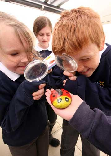 On inspection: Howe Dell's environmental approach has piqued pupils' interest in nature