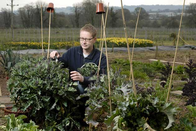 Feast your eyes: 'If I can't eat it, I'm not all that interested,' says veg grower Mark Diacono