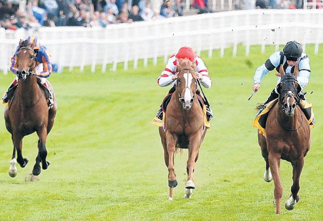 Johnny Murtagh on Frozen Fire (left) heads towards a hostile reception at the finish of the Ormonde Stakes at Chester yesterday as he is left trailing in a three-horse race by winner William Buick on Buccellati (right) and Richard Hughes on Scintillo