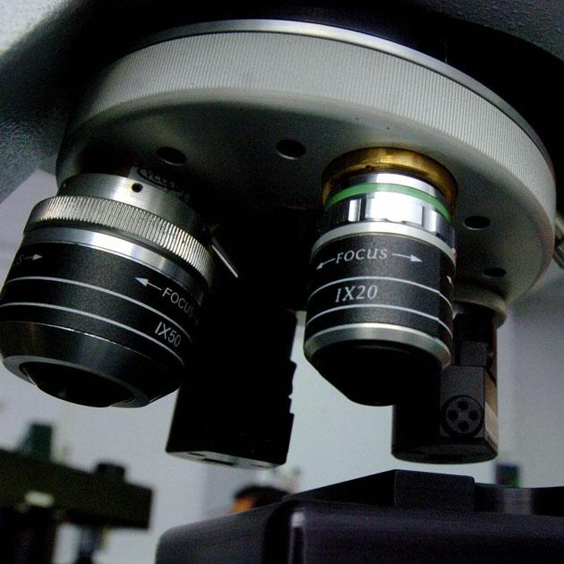 Get focussed with optometry