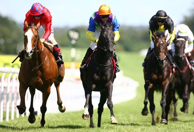 Illustrious Blue, ridden by Jim Crowley (centre), leads the field home to claim the Coutts Glorious Stakes at Goodwood yesterday