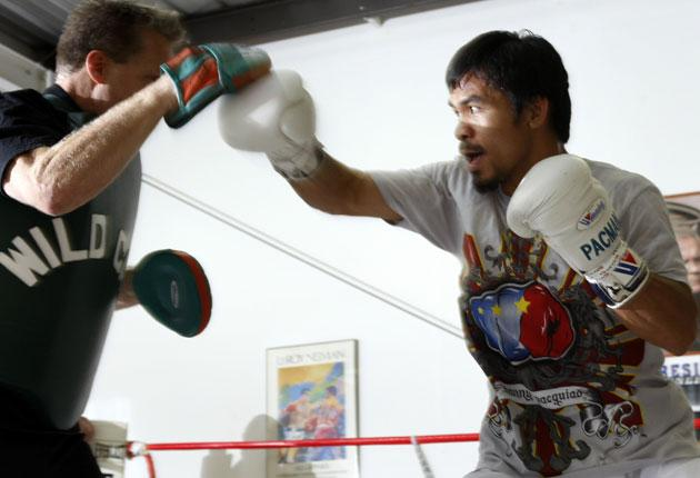Manny Pacquiao (right) is put through his paces by trainer Freddie Roach before the WBO welterweight title fight against Miguel Angel Cotto in Las Vegas