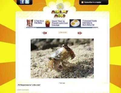http://www.makemymood.com/2009/11/13/little-crab/
