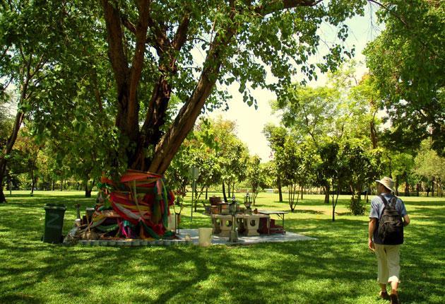 Going green: a tourist takes a stroll through Romaneenart Park