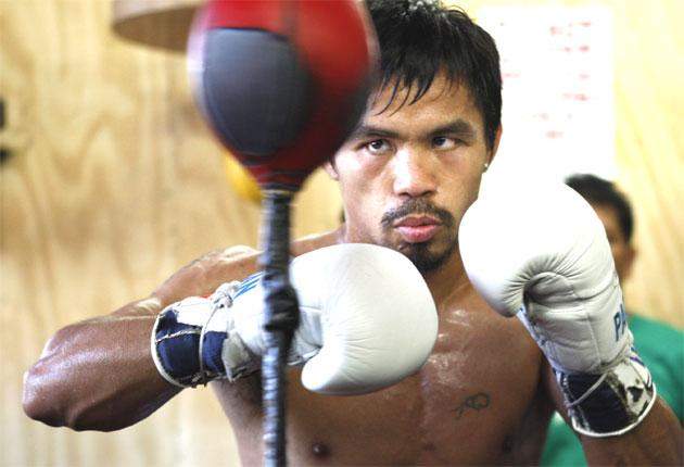 Manny Pacquiao (above) has refused Floyd Mayweather's demands for him to take blood tests before any fight