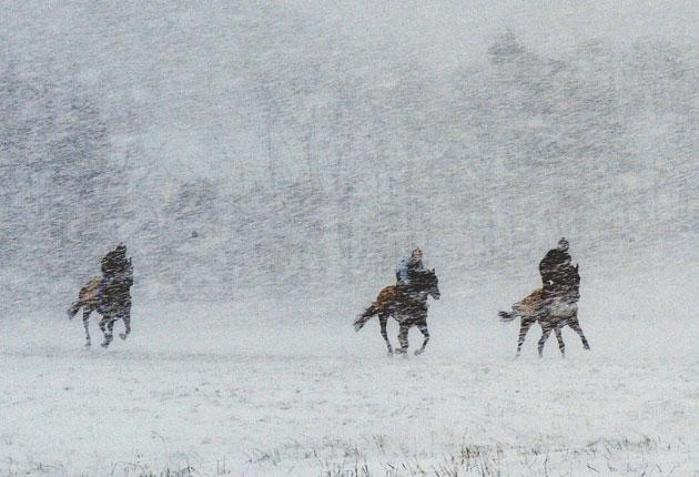 The gallops at Middleham were affected by the snow storms