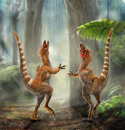 An artist's impression of two Sinosauropteryx