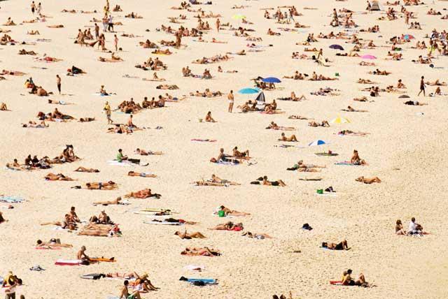 Golden star: Bondi has become the most vibrant beach in Australia
