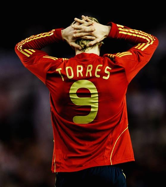 Torres should be fit in time for the World Cup