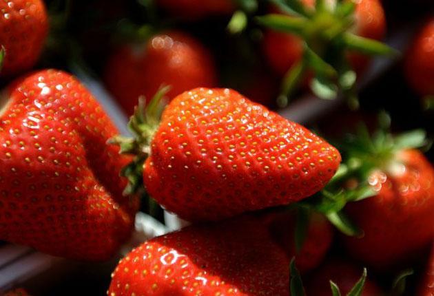 Tesco was selling Dutch strawberries