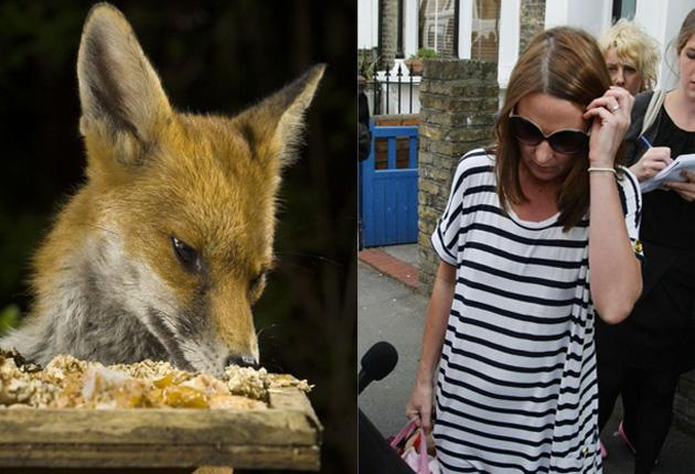 Right, Pauline Koupparis, the mother of the twin baby girls who were mauled. Keft, an urban fox raids a bird table.