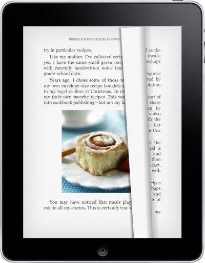 Kindle for iPad: Reading View