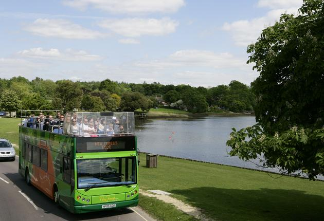Go green: An open-top bus will run visitors around the New Forest until 12 September