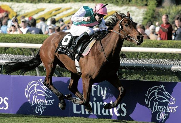 Midday, successful at last autumn's Breeders' Cup, tries for a repeat win in the Nassau Stakes at Goodwood today