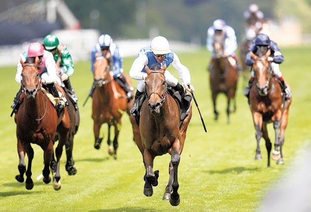 Goldikova can become Europe's most prolific Group One winner with a victory in Deauville tomorrow