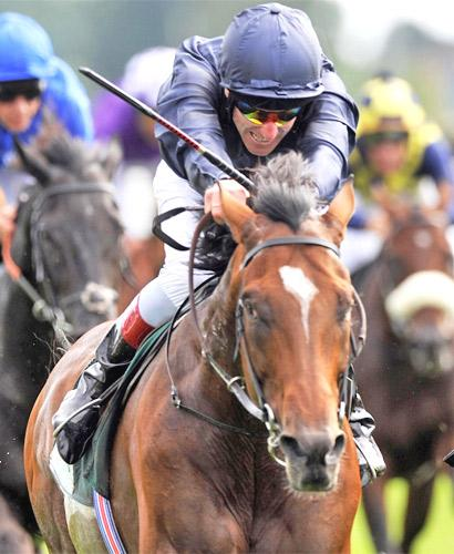 Johnny Murtagh and Rip Van Winkle win the Group One Juddmonte International Stakes at York yesterday