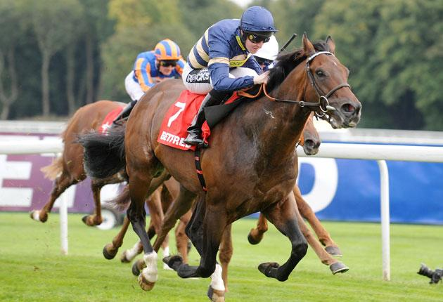 Pat Cosgrave rides Markab to victory in the Group One Betfred Sprint Cup at Haydock yesterday