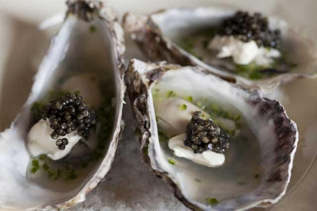 Oysters in Champagne jelly with cucumber and caviar