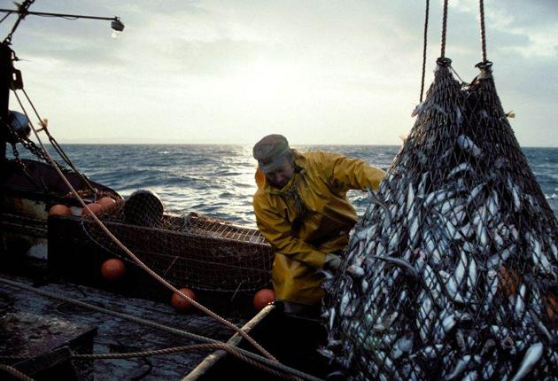 A fisherman hauling in the nets on a Grimsby based trawler