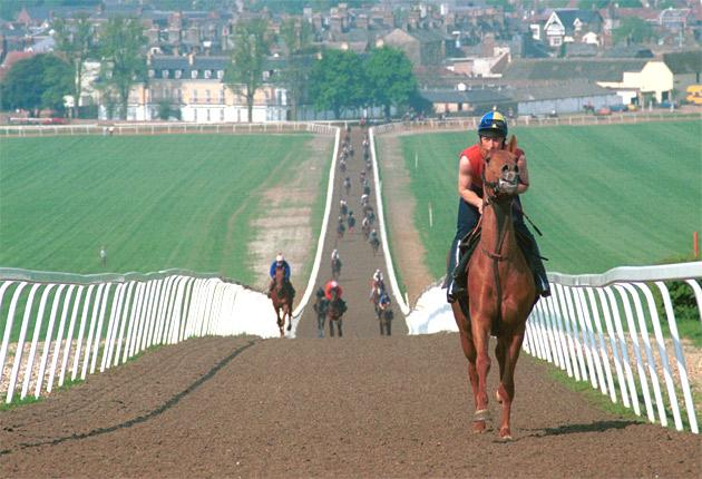 The Earl of Derby wants to build 1,200 new homes in Newmarket