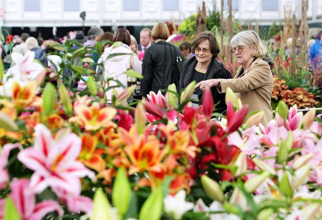 Visitors to the 2011 Chelsea Flower Show will be able to see entries in the Artisan Garden section