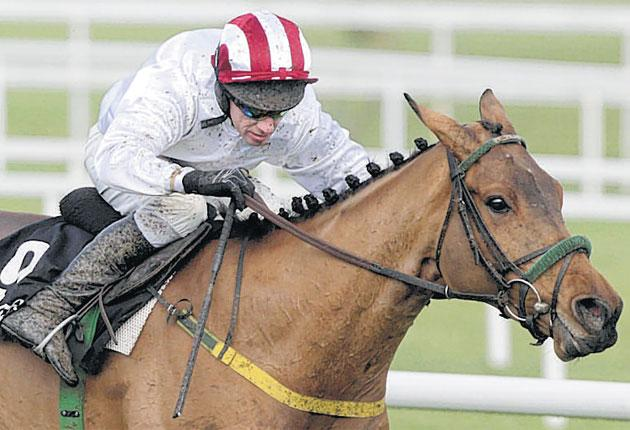 A rejuvenated Pandorama wins the Lexus Chase at Leopardstown yesterday