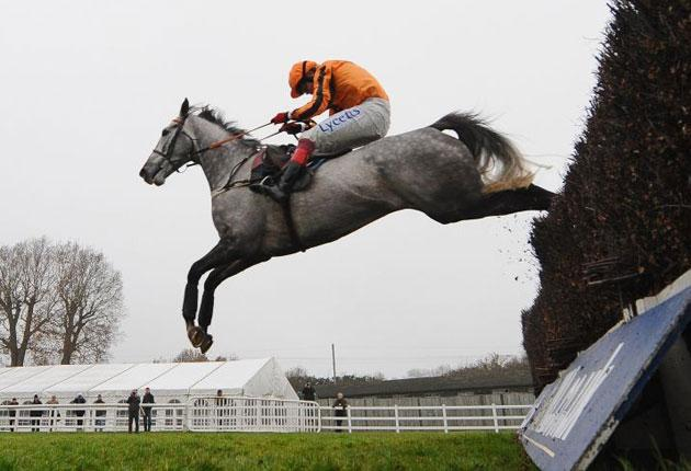 Medermit redeemed his reputation at Plumpton last time, but faces a sterner test at Cheltenham today