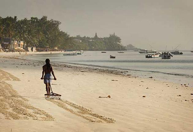 Go with the grain: Preparing a private beach in Mombasa