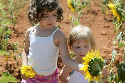 Research suggests vitamin D can protect children against allergies.