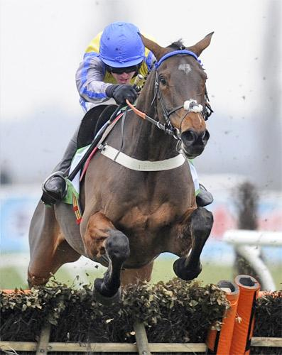 Peddlers Cross has not seen action since November