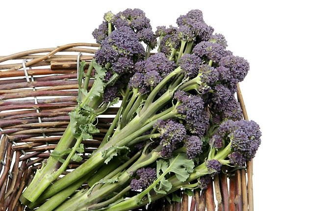 Purple-sprouting broccoli: one of health-conscious foodies' favourite vegetables