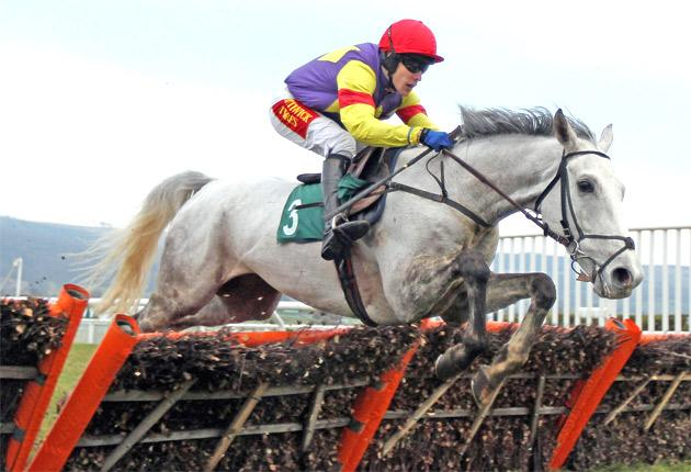 Grands Crus, ridden by Tom Scudamore, haswon all three starts this term
